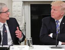 Apple penalizzata dai dazi sulla Cina. Tim Cook incontra a cena Trump